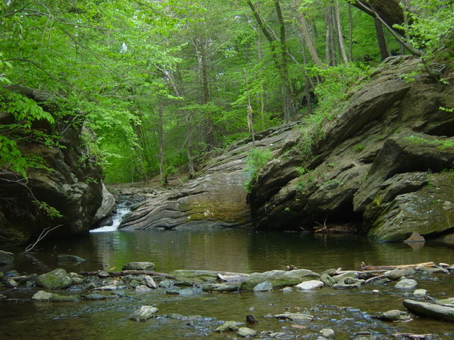 Cresheim_Creek,_Wissahickon